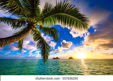 美しいラニカイ、ハワイのカイルア日の出