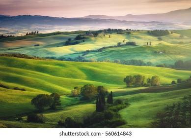 Wunderschöne Grüns in der Landschaft und mit Licht gemalt.