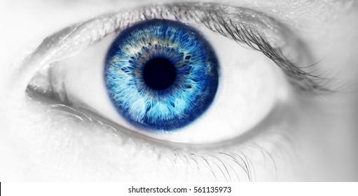 美しい人間の目、マクロ、クローズアップ青、黄、茶色、