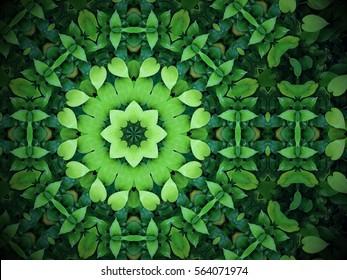 抽象的な緑の背景、万華鏡のような効果を持つハート型の緑の葉