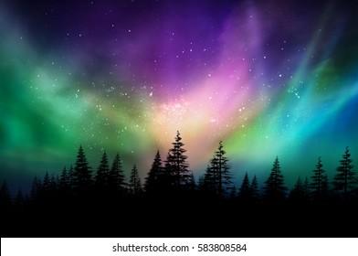Večbarvni severni sij (Aurora borealis) v kanadskem gozdu