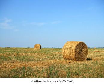 Bauernfeld mit Heuballen nach dem Anbau