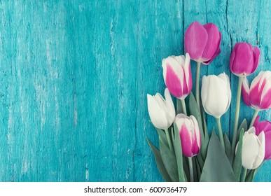 ターコイズブルーの素朴な木製の背景にチューリップのフレーム。春の花。バレンタインデー、女性の日、母の日のグリーティングカード。上面図。