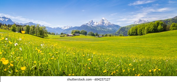 Panoramablick auf idyllische Berglandschaft in den Alpen mit frischen grünen Wiesen in voller Blüte an einem schönen sonnigen Tag im Frühling, Nationalpark Berchtesgadener Land, Bayern, Deutschland