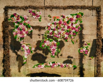 World map of flowers. Flowers on the grid.