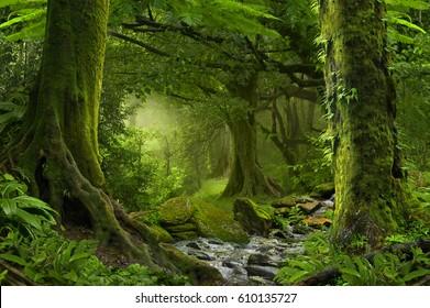 Nepal Dschungel mit Fluss
