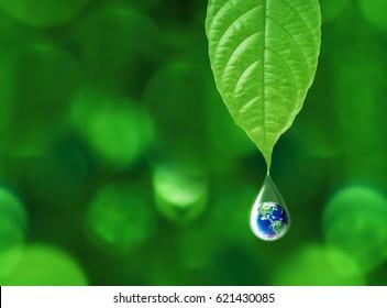 Erde in Wassertropfenreflexion unter grünem Blatt-, Wasser- und Umweltkonzept, Elemente dieses Bildes von der NASA geliefert
