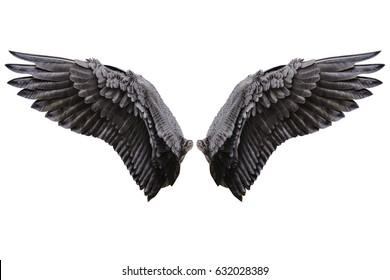 クリッピング部分と白い背景で隔離の天使の羽