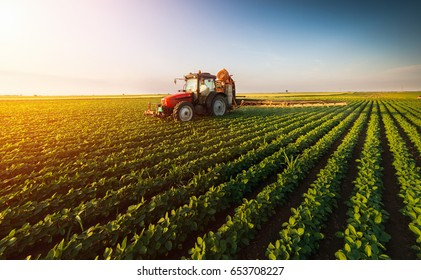 Traktor sprüht Pestizide auf Sojabohnenfeld mit Sprühgerät im Frühjahr
