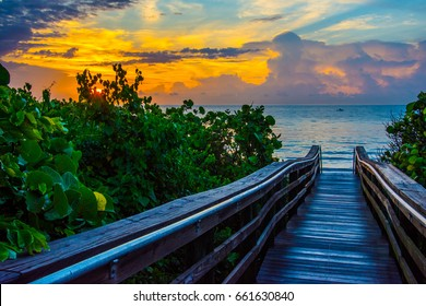 The sun breaking through the clouds and the leaves of the sea grape trees by the path to a Florida beach with a boat passing by on the calm ocean