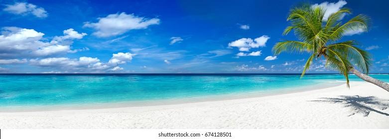 tropischer Paradiesstrand mit weißem Sand und Kokospalmen reisen Tourismus breites Panoramahintergrundkonzept