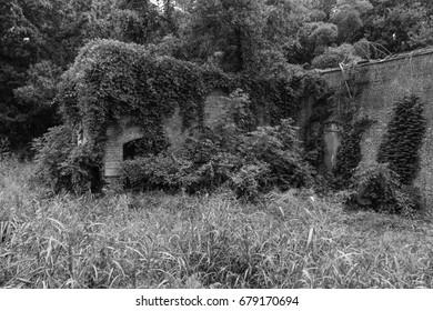 Instalación abandonada del sistema de desmotado continental, Pomeria, SC