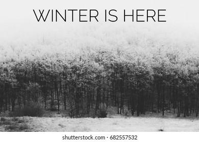 Winter is here tekst met winters tafereel op de achtergrond. Zwart-wit foto