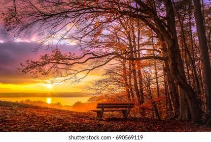 バイエルン州のアンマー湖で夕暮れ時のロマンチックな秋の気分。湖の景色を望む森の端にある空の公園のベンチ。