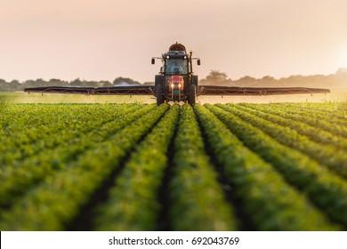 Tractor rociando pesticidas en campo de soja con pulverizador en primavera