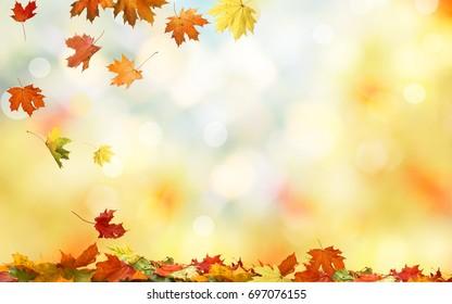 Fallender Herbstahorn hinterlässt natürlichen Hintergrund. Buntes Laub