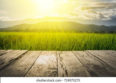 Viejo piso de madera marrón junto al campo de arroz verde en la noche y el rayo del atardecer