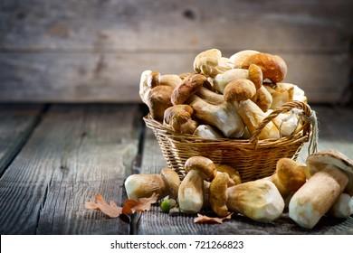 Boletus de setas sobre fondo de madera. Autumn Cep Mushrooms. Ceps Boletus edulis sobre fondo oscuro de madera, de cerca en la mesa rústica de madera. Cocina deliciosa seta orgánica. Comida gourmet