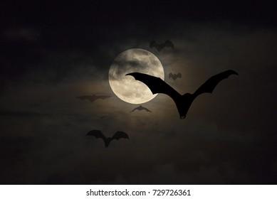 Bats flying on the full moon night.