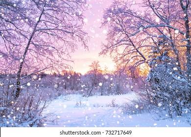 hermoso paisaje de invierno con bosque, árboles y amanecer. mañana invernal de un nuevo día. paisaje de invierno púrpura con puesta de sol