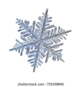 スノーフレークは、白い背景で隔離。実際の雪の結晶のマクロ写真:6つの長くエレガントな腕、たくさんの側枝、複雑で華やかな形の大きな樹状突起。