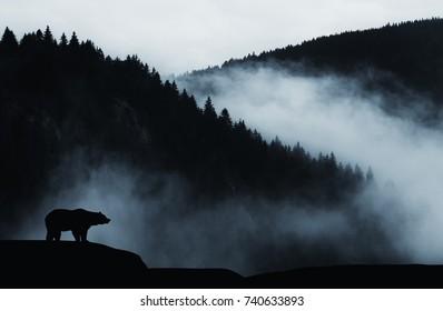 Minimale Wildnislandschaft mit Bärensilhouette und nebligen Bergen