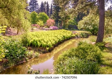 Ein Fluss, der zwischen Heiden im Park fließt.