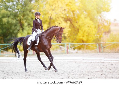 Junge Reiterin auf Lorbeerpferd, die fortgeschrittene Prüfung auf Dressurwettbewerb durchführt. Reitereignishintergrund mit Kopierraum