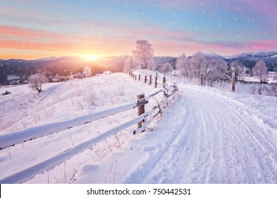 Winterlandschaft. Winterstraße und schneebedeckte Bäume