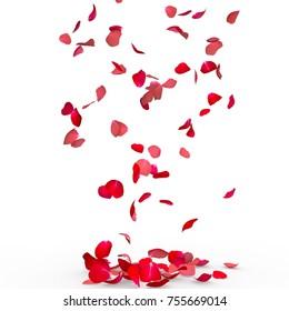 Rosenblätter fallen zu Boden. Isolierter Hintergrund