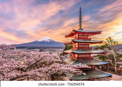 Fujiyoshida, Japón, en la pagoda Chureito y el monte. Fuji en primavera con flores de cerezo.