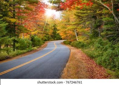 曲がりくねった道路は、ニューイングランドの見事な紅葉の中を曲がっています。色とりどりの木々を覗く太陽光線。