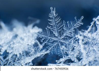 Sneeuwvlok op een blauwe achtergrond