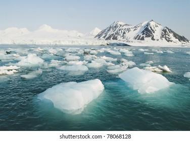 北極海の海に浮かぶ氷河氷
