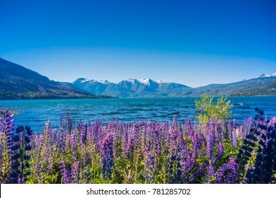 Nationalpark Los Alerces, Patagonien, Argentinien.