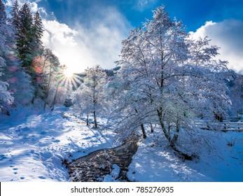 Sonnenuntergang mit Sonne im Rahmen im schneebedeckten Wald