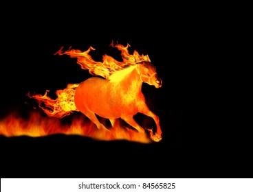 黒で隔離の火の馬
