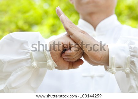 hand of master making gestures for kung fu Royalty-Free Stock Photo #100144259