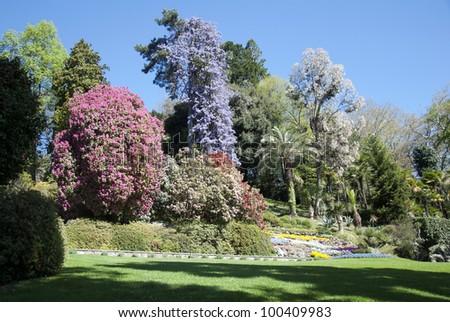 garden #100409983