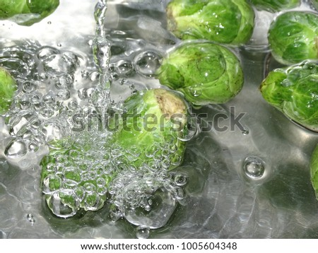 In the photo is a Brussels sprout under the water stream.  #1005604348