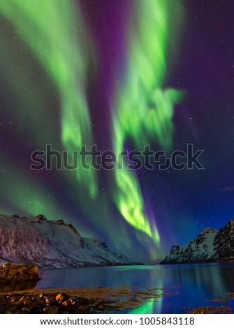 The polar lights in Norway . Ersfjord.Tromso #1005843118