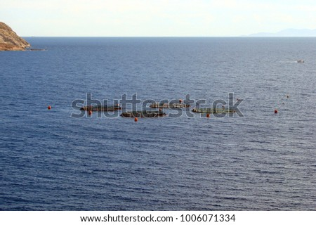Cape Sounion on the southern coast of mainland Greece. 06. 20. 2014. A view of the grid for breeding fish of the Greek fishery. #1006071334