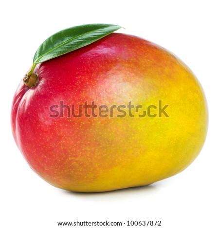 Mango #100637872
