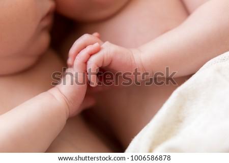 newborn twins. the twins hold hands. the hands of newborn children