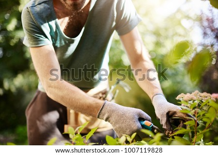 Close up of strong man in gloves cutting leaves in his garden. Farmer spending summer morning working in garden near countryside house. #1007119828