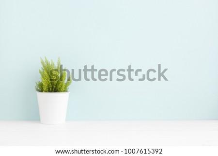 Plant on the shelf mock up.