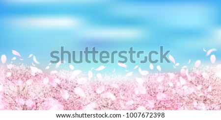 Cherry Blossom Spring landscape background #1007672398
