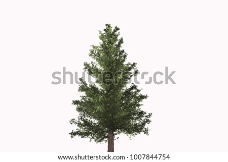 Trees in white background #1007844754