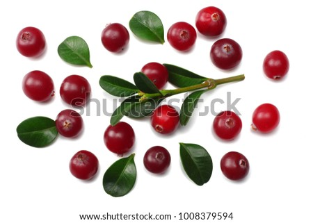 Cranberry isolated on white. With clipping path. Full depth of field. #1008379594