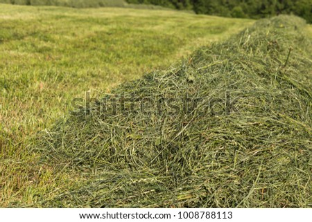 summer hay making field landscape in rural countryside of south germany #1008788113